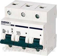 Автоматический выключатель ENERGIO EN 3P C 100А 6кА