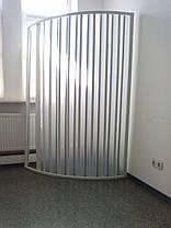Шторка дверь для душа полукруглая 100х100х185 см, фото 2