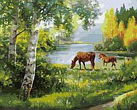 Картина рисование по номерам Rainbow Art Лошади на лугу BK-GX34062 40х50 см Пейзаж, природа набор для росписи