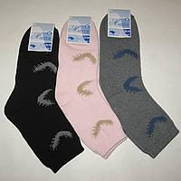 Женские махровые носки MASTER - 13.50 грн./пара (перышко)