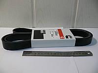 Ремень привода генератора ГАЗЕЛЬ-БИЗНЕС двигатель COMMINS 2.8 8РК2155, фото 1