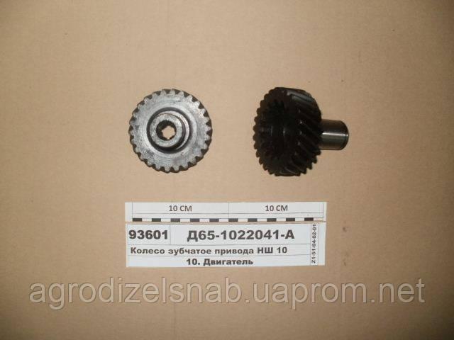 Колесо зубчатое привода насоса НШ-10 ЮМЗ  Д65-1022041-А