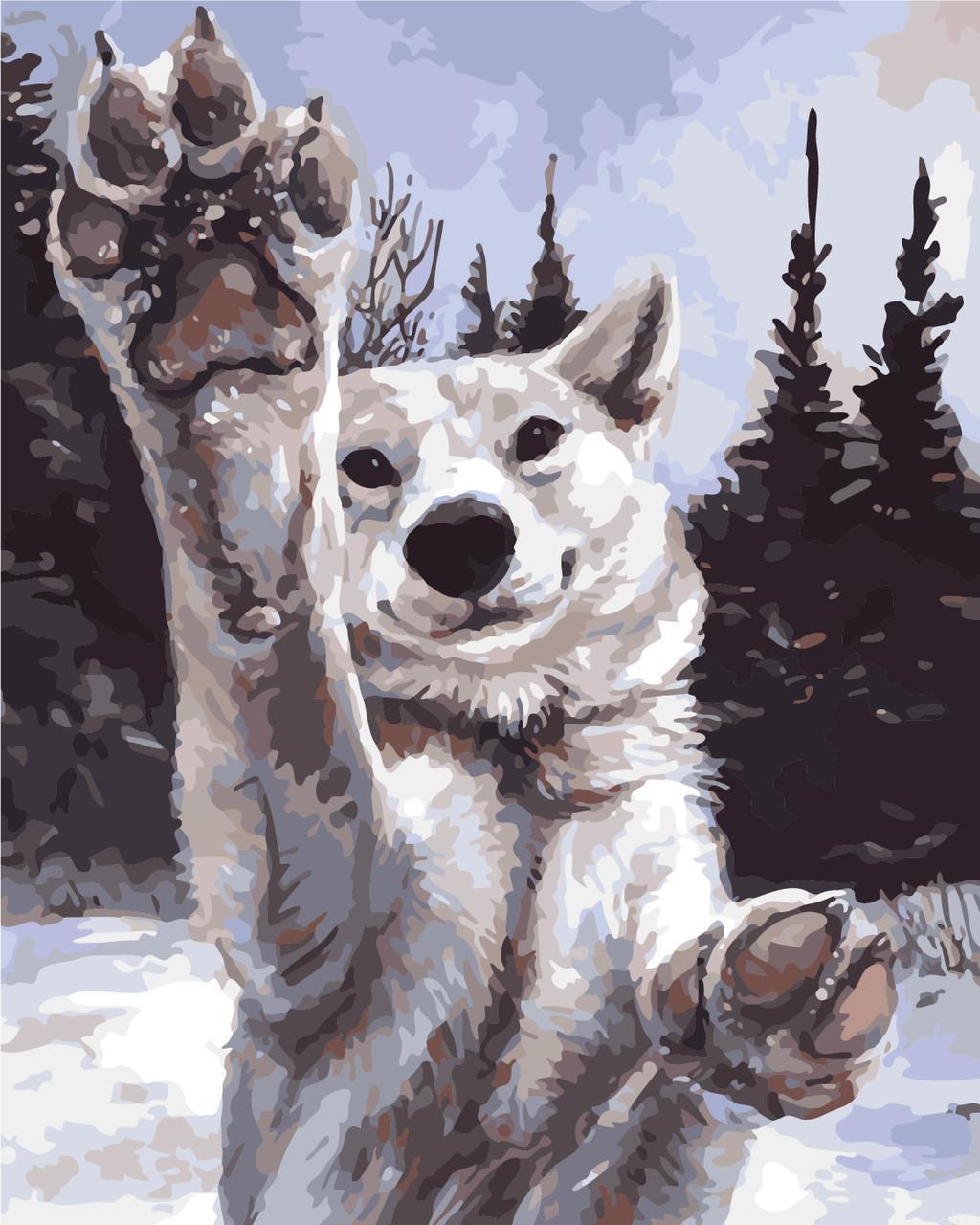 Картина рисование по номерам ArtStory Хочу играть 40х50см AS0284 набор для росписи, краски, кисти, холст