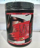 Л- карнитин POWER PRO CARNITINE 5000 0.5 кг (арбуз)