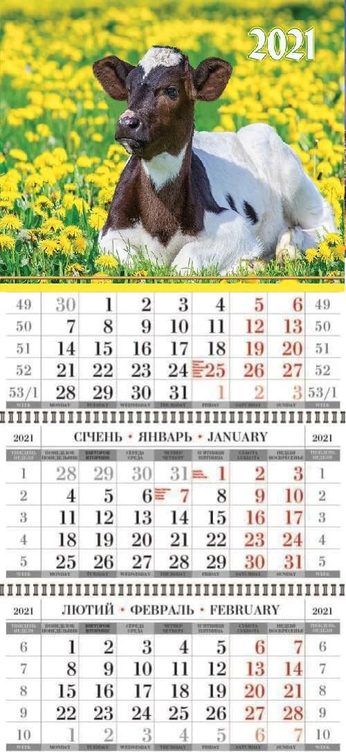 Календар квартальний (3-пружинний) Символ року 2021