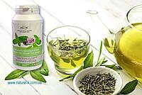 Продукт ДЛЯ ВСЕЙ СЕМЬИ! Зеленый чай с перечной мятой Вивасан