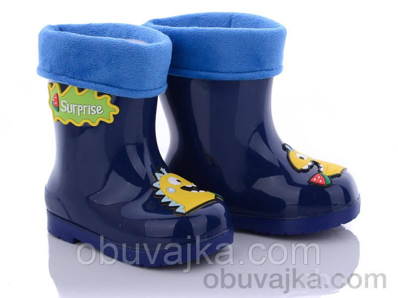Взуття для негоди Дитячі гумові чоботи від фірми BBT(25-29)