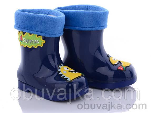 Взуття для негоди Дитячі гумові чоботи від фірми BBT(25-29), фото 2