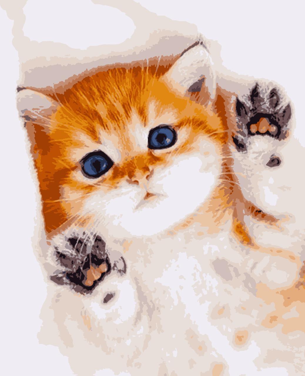 Картина рисование по номерам Пухнаста радість PNX0670 Artissimo 50х60см розпис за номерами набір, фарби,