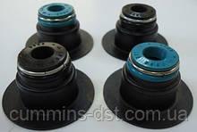 Колпачек маслосъемный клапана для двигателя Cummins серии 6C, 6CT, 6CTA