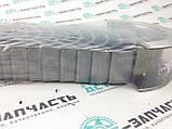 Вкладыши коренные СТД Cummins 4B3.9/6B5.9 3800290/3802070/4955853, фото 3