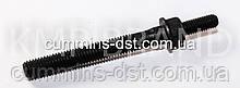 Болт ГБЦ Cummins L10/M11/QSM11/ISM11