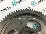3929028/3912884 Шестерня распредвала на двигатель Cummins 6B5.9, фото 2