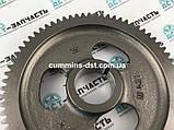 3929028/3912884 Шестерня распредвала на двигатель Cummins 6B5.9, фото 3