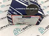 Клапан выпускной на Cummins 4B 3802967, фото 3