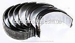 Вкладыши шатунные STD CAT 3020/C2.2, фото 2