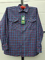 Рубашка байковая мужская норма 50 в розницу, фото 1