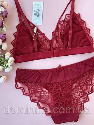 85В Красный кружевной сексуальный комплект нижнего белья, прозрачный бюстгальтер с портупеей, фото 2