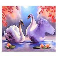 Малювання по номерах 40*50см 30469 Лебеді
