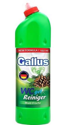 Універсальний засіб для чищення унітазу і видалення накипу Gallus WC gel walf-frische 1250 мл., фото 2