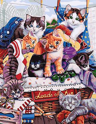 AS0614 Картина-набор по номерам Котята, В картонной коробке, фото 2