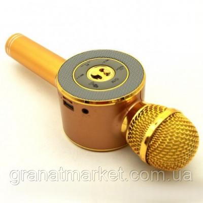 Детский беспроводной аккумуляторный караоке микрофон Wster с колонкой Bluetooth 24 см Золотой (WS-668)