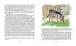 Книга Рассказы о животных, фото 3