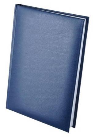 Ежедневник недатированный А5 EXPERT, синий(BM2004-02)