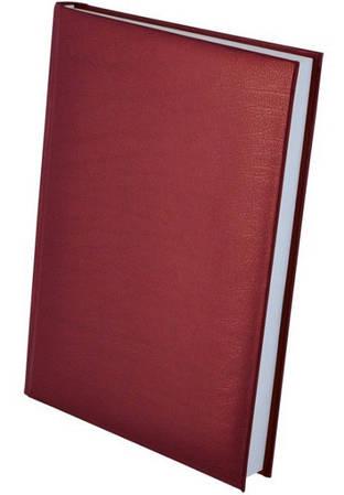Ежедневник недатированный А5 EXPERT, бордовый(BM2004-13)