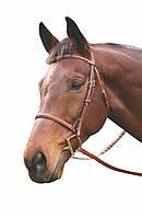 Уздечка с поводьями Plain, для лошади, пони.