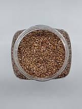 Лен семена, 300г, фото 2