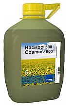 Космос 500