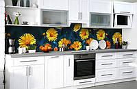 Скинали на кухню Zatarga «Солнечная улыбка» 600х2500 мм виниловая 3Д наклейка кухонный фартук самоклеящаяся, фото 1