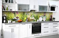 Скинали на кухню Zatarga «Летний пикник» 600х3000 мм виниловая 3Д наклейка кухонный фартук самоклеящаяся, фото 1
