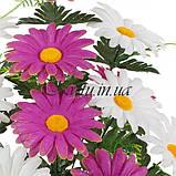 Искусственные цветы букет герберы двухцветный, 52см, фото 2