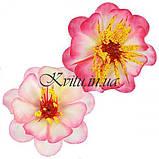 Искусственные цветы букет сакуры двухцветный, 46см, фото 2