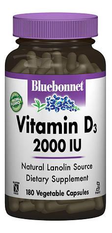Витамин D3 2000IU, Bluebonnet Nutrition, 180 вегетарианских капсул, фото 2