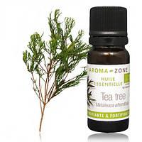 Чайное дерево (Melaleuca alternifolia) BIO Объем: 30 мл