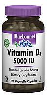 Вітамін D3 5000IU, Bluebonnet Nutrition, 120 гельових капсул