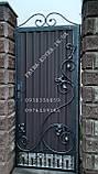 Закрытые ворота с ковкой., фото 2