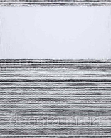Рулонні штори день-ніч Зебра мадрас, фото 2