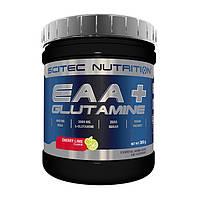 Незаменимые аминокислоты с глютамином Scitec Nutrition EAA + glutamine 300 g