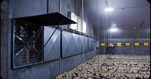 Системи мікроклімату для пташників