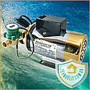 """Насос для повышения давления воды в системе ТМ """"Насосы плюс оборудование"""" 15WBX-12, фото 2"""