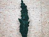 Б/У Елка искусственная литая 1.5 м, фото 2