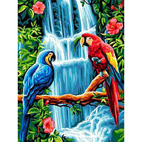 Картина рисование по номерам Babylon Пара попугаев VK251 30х40см набор для росписи, краски, кисти, холст