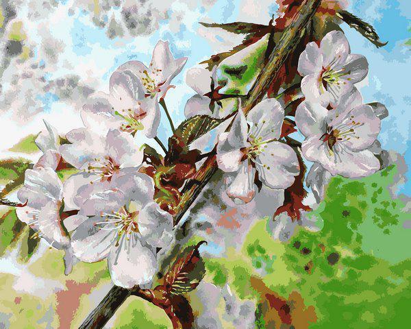 Картина рисование по номерам Babylon Цвет вишни VP1313 40х50см набор для росписи, краски, кисти, холст
