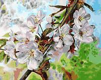 Картина рисование по номерам Babylon Цвет вишни VP1313 40х50см набор для росписи, краски, кисти, холст, фото 1