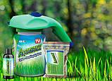 Aquagrazz - Травосмесь для газона (Акваграз), фото 5