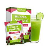 Экстракт  Худия Гордони  для похудения. Средства для похудения Hoodia Gordonii, фото 2